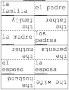 Spanish Family Terms
